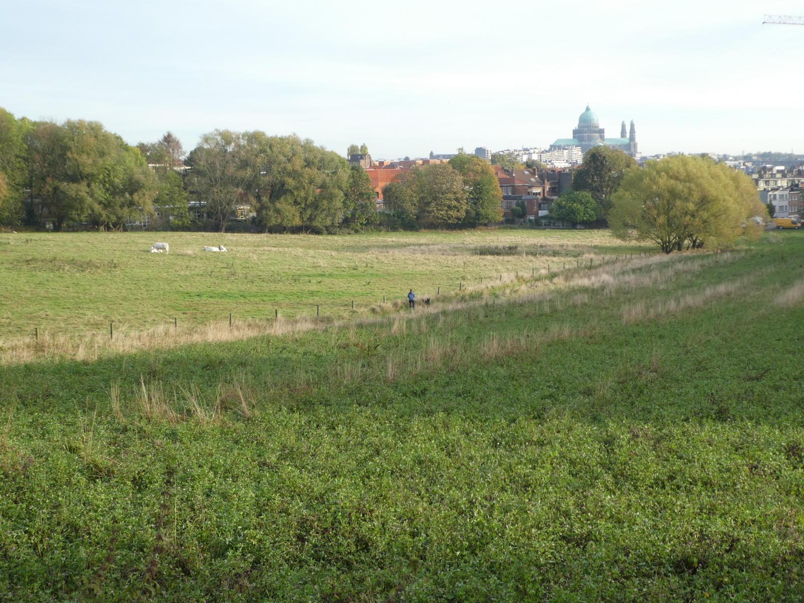 Hogenbos vers sentier vicinal